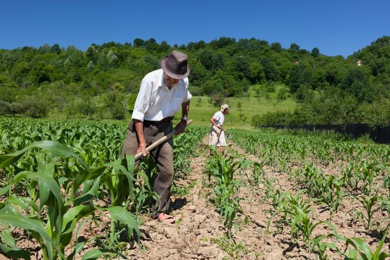 agricultura-familiar-106791452.jpg