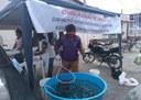 15_01_2020 Governo apoia agricultores que  criam e comercializam peixe vivo em Mãe D'água (4).jpg