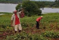 Comunidade rural assistida pelo Projeto Cooperar é destaque na imprensa nacional