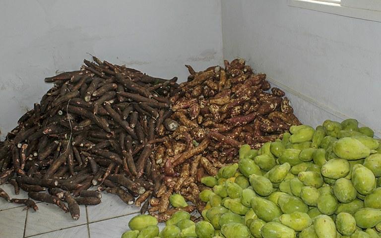 entrega de alimentos da agricultura familiar_foto alberto machado (3).JPG