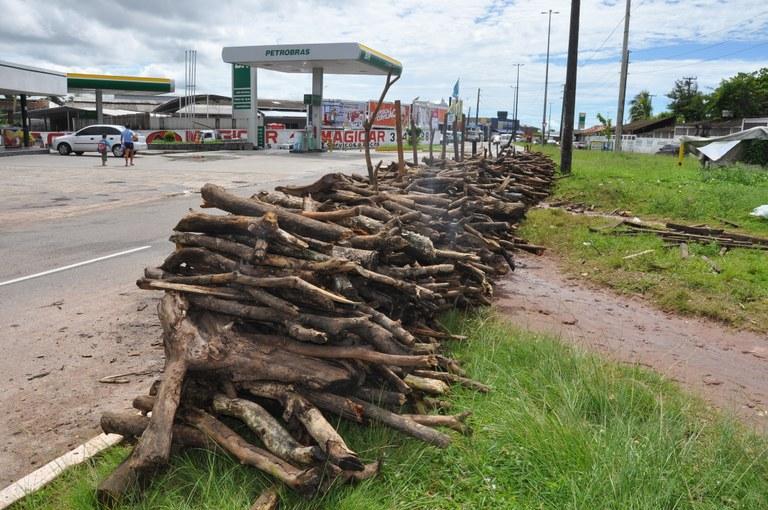 sudema venda legal de madeira (1).JPG